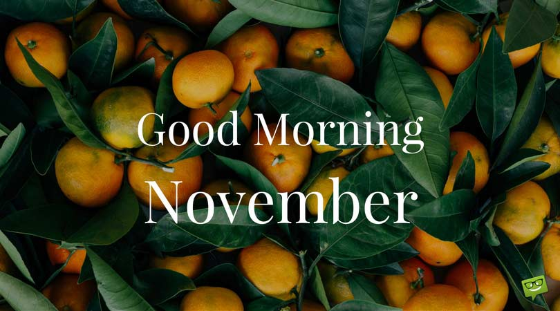 Good Morning, November