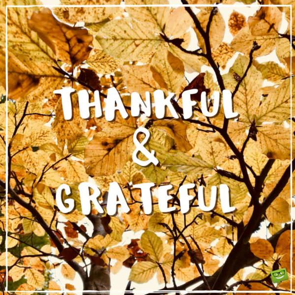 Thankful and grateful.