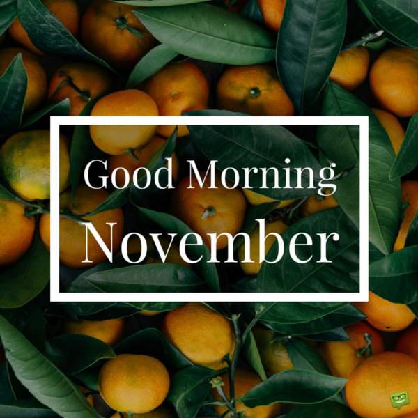 Good Morning, November.