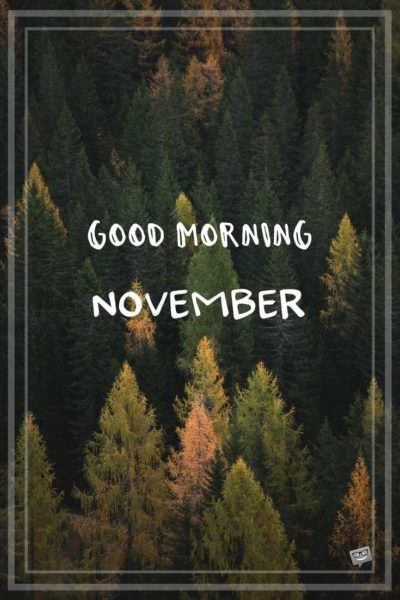 Good Morning + Hello, November!