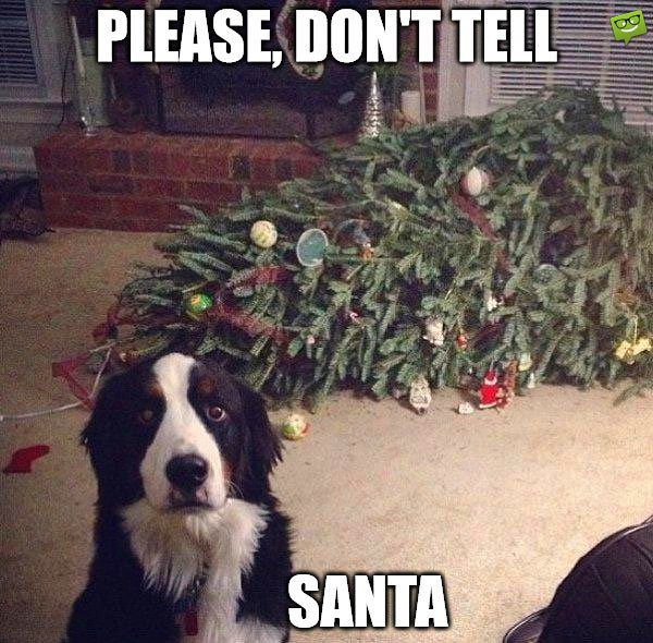 Please, don't tell Santa.