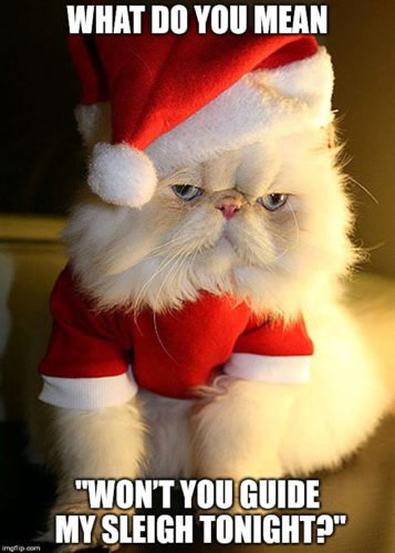"""What do you mean """"Won't you guide my sleigh tonight?"""""""