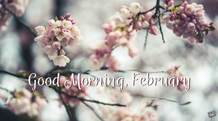 Good Morning, February (Love is in the Air)