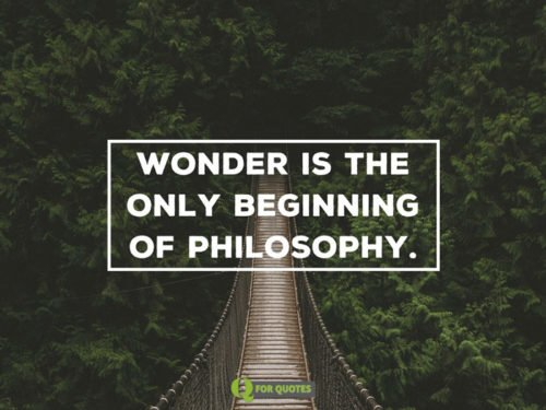 Wonder is the only beginning of philosophy. Plato