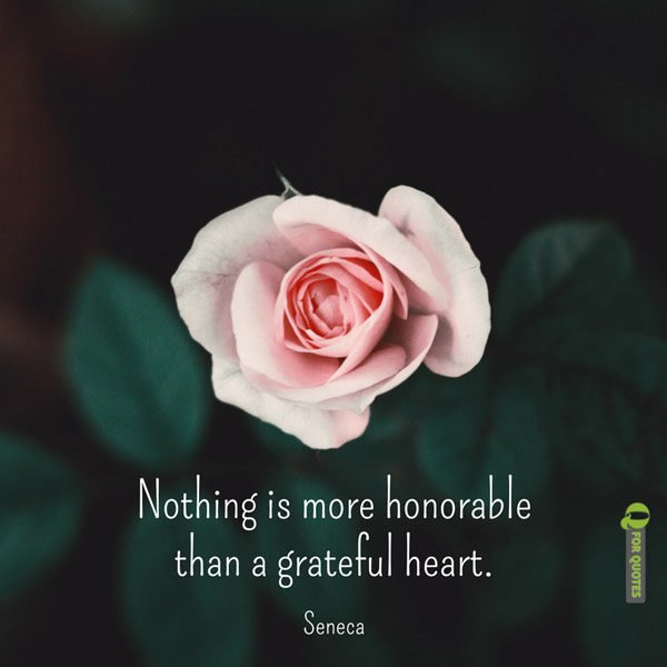 Nothing is more honorable than a grateful heart. Seneca