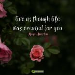 Live as though life was created for you. Maya Angelou