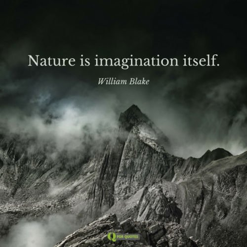 Nature is imagination itself. William Blake
