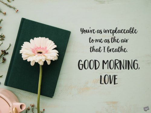 You're as irreplaceable to me as the air that I breathe. Good Morning, Love.