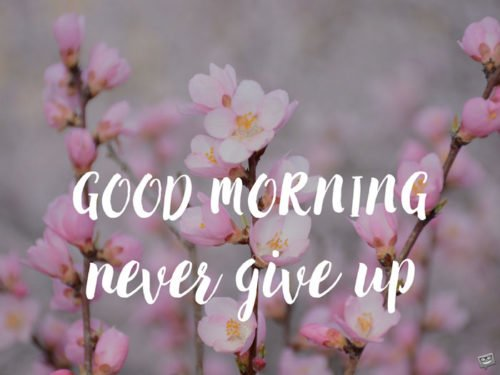 Good Morning. Never give up.