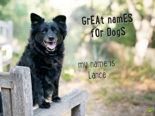 My name is Lance.