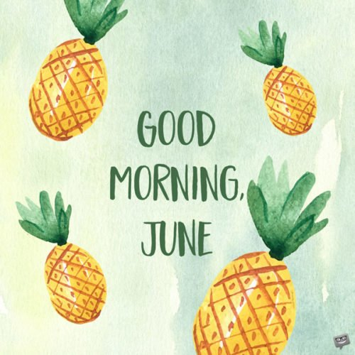 Good morning, June.