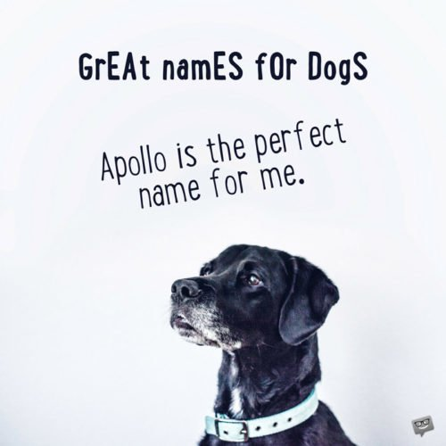 Apollo is the perfect name for me.