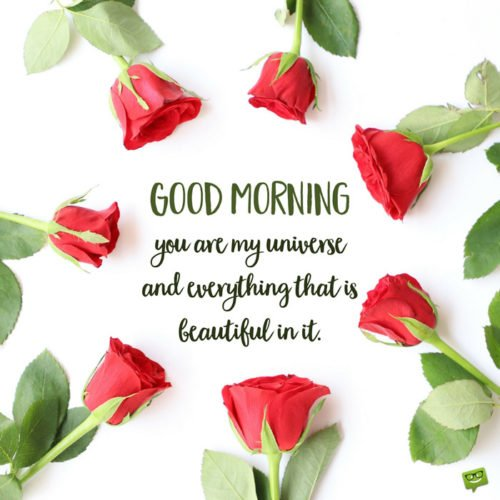 Good Morning. You are my universe and everything that is beautiful in it.