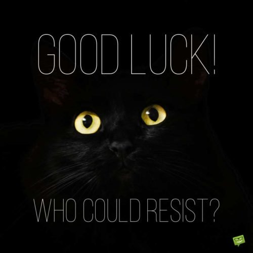 Good Luck! Who could resist?