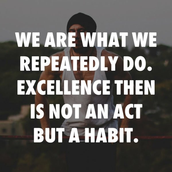 We are what we repeatedly do. Excellence then is not an act but a habit. Aristotle