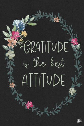 Gratitude is the best attitude.