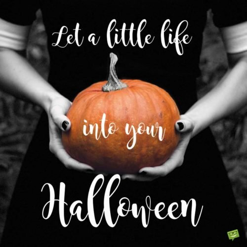 Let a little life into your Halloween.