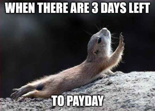 When there are 3 days left to payday - Go on without me squirrel meme