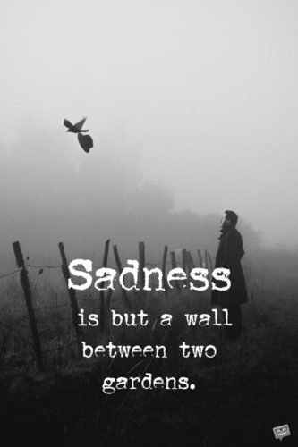 Sadness is but a wall between two gardens. Kahlil Gibran