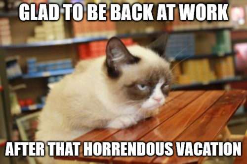 Grumpy cat on table meme for the day you get back to work.