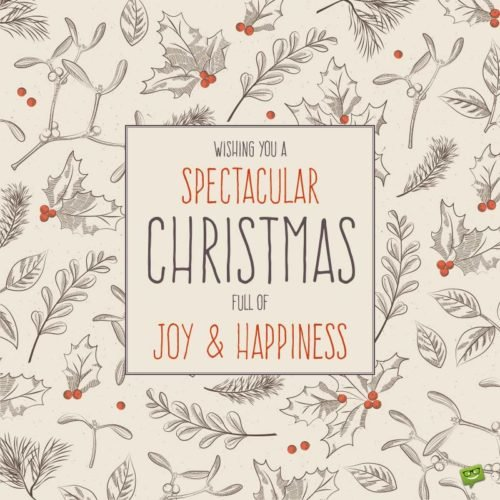 Wishing you a spectacular Christmas full of joy and happiness.
