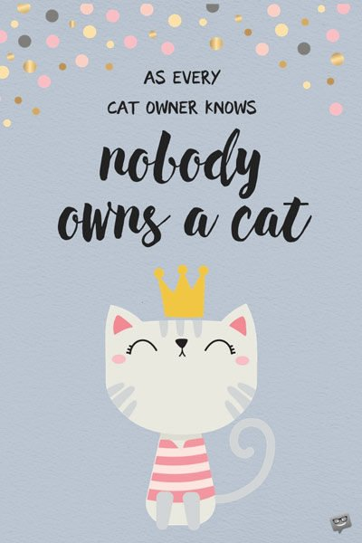 As every cat owner knows nobody owns a cat.