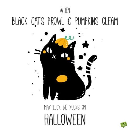 When black cats prowl & pumpkins gleam, may luck be yours on Halloween.