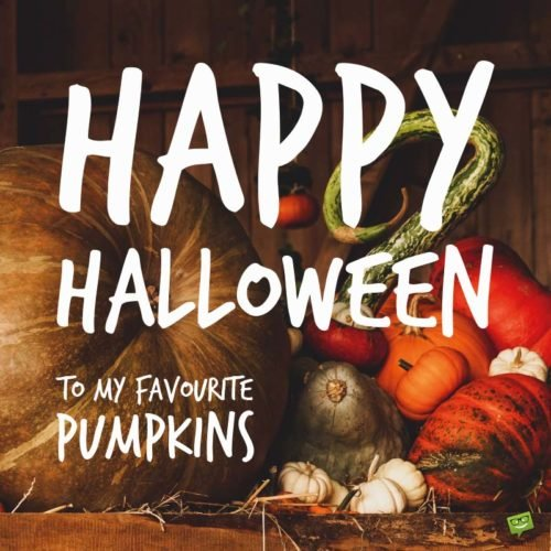 Happy Halloween to my favourite pumpkins.