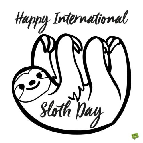 Happy International Sloth Day!