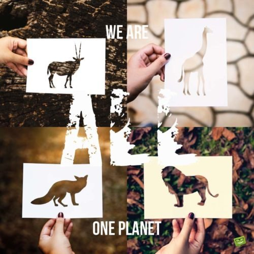 We are all one planet.