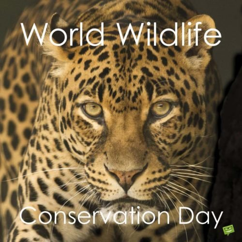 World Wildlife Conservation Day.