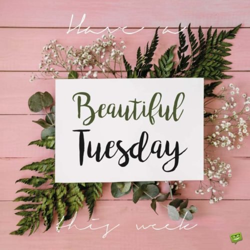 Happy Tuesday Famous Quotes About Tuesday