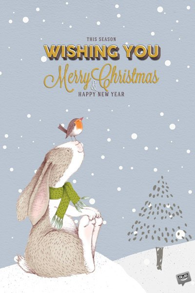 This Season Wishing You Merry Christmas and Happy New Year.