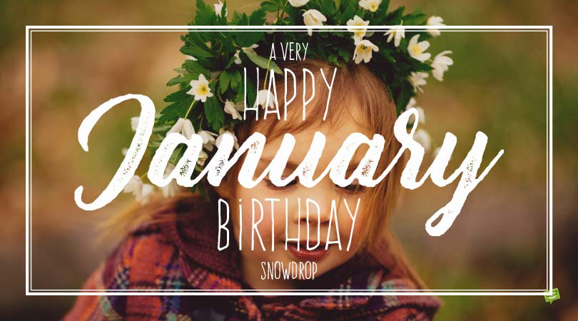 Birthday Flowers | The Right Flower According to their Birthday Month