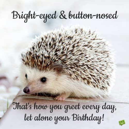Bright-Eyed & Button-nosed. That how you greet your every day, let alone your Birthday!
