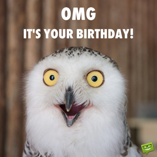 Funny Happy Birthday Images Smile It S Your Birthday