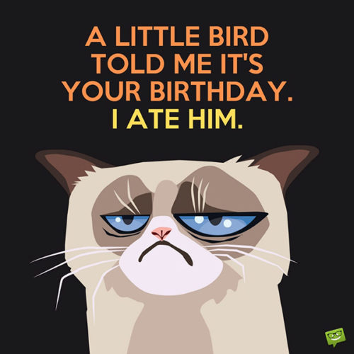 A little bird told me it's your birthday. I ate him.