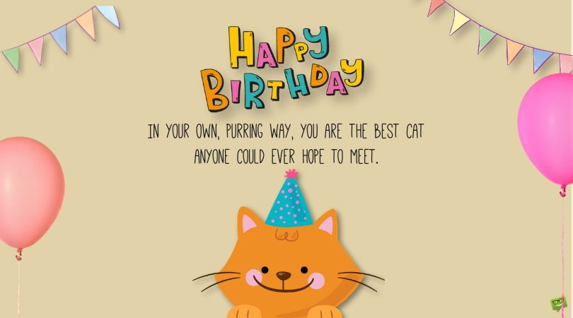 Purry Happy Birthday | Wishes for a Cat