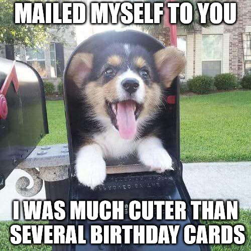 Mailed myself to you, I was much cuter than several birthday cards.