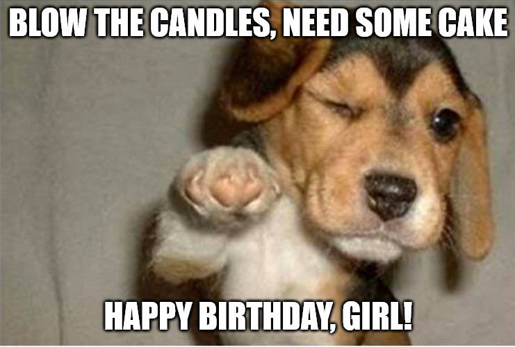 Funny dog pointing meme for a birthday girl.