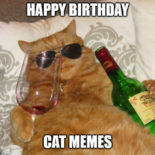 Happy Birthday Cat meme.