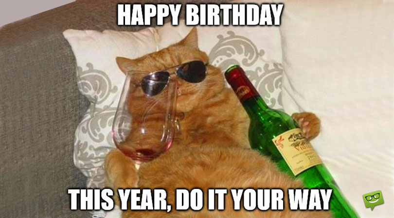 Cat Memes to Wish You Happy Birthday
