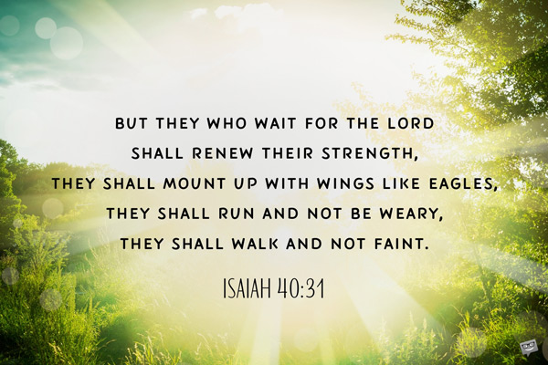 But they who wait for the Lord shall renew their strength, they shall mount up with wings like eagles, the shall run and not be weary, they shall walk and not faint. Isaiah 40:31