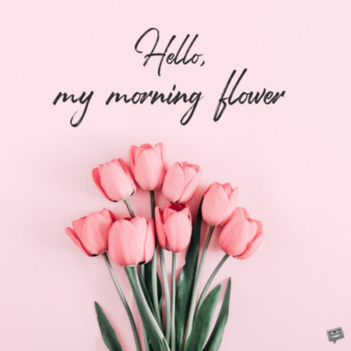 Hello, my morning flower.