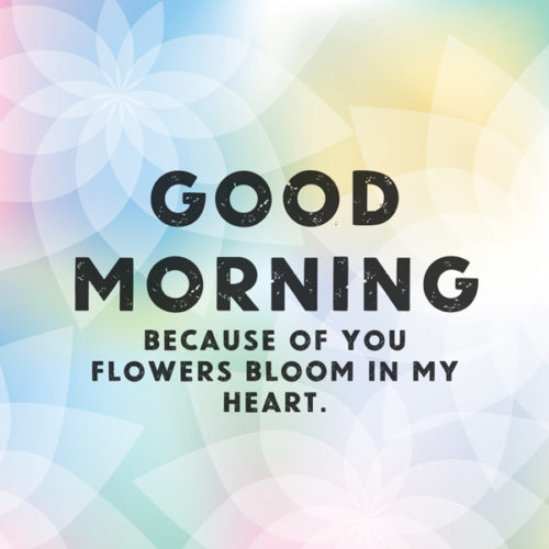 Good morning. Because of you, flowers bloom in my heart.