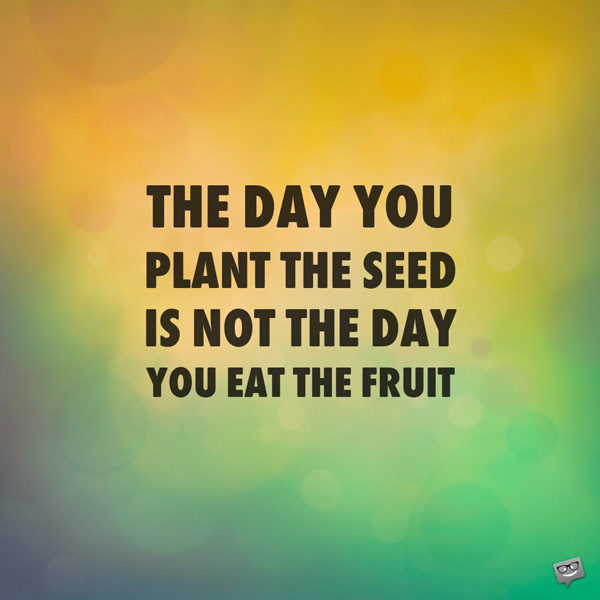 The day you plant the seed is not the day you eat the fruit.
