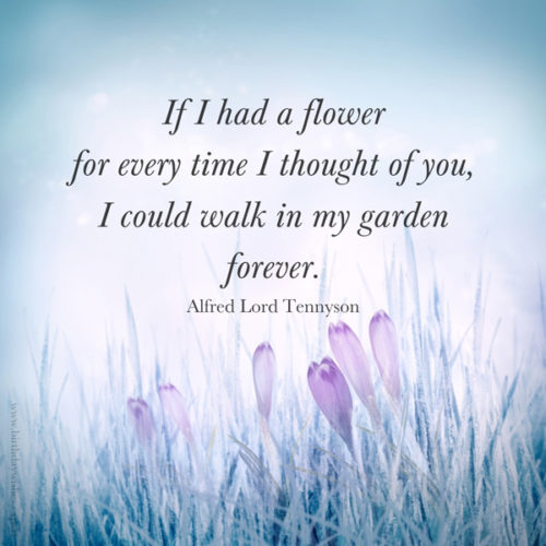 Quote about losing a loved one on image for easy sharing.