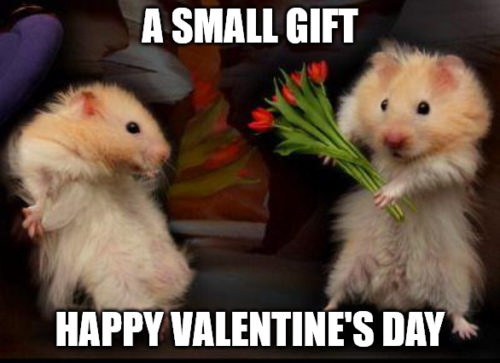A small gift My Valentine meme