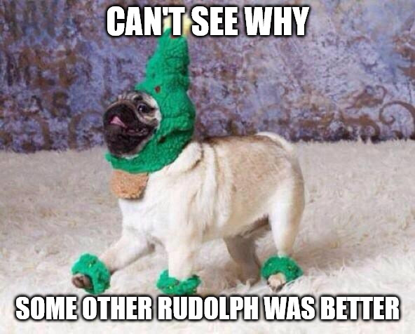 Cant see why some other Rudolph was better - Christmas dog meme