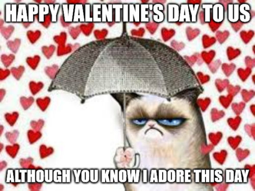 Happy Valentine's Day to us, although you know i adore this day - Grumpy cat Valentine rain meme